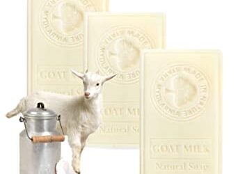 Savon au lait de chèvre – Le guide de fabrication